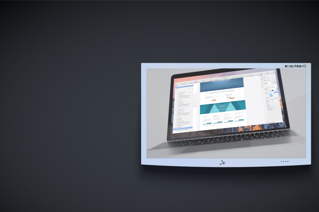 API Portal Homepage Build